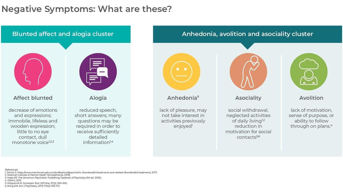 What are the main negative symptoms in schizophrenia?